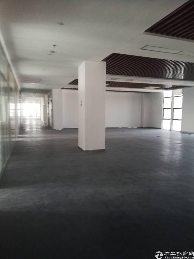 深圳葵涌工业园区带现成装修厂房380平方出租,无需转让费