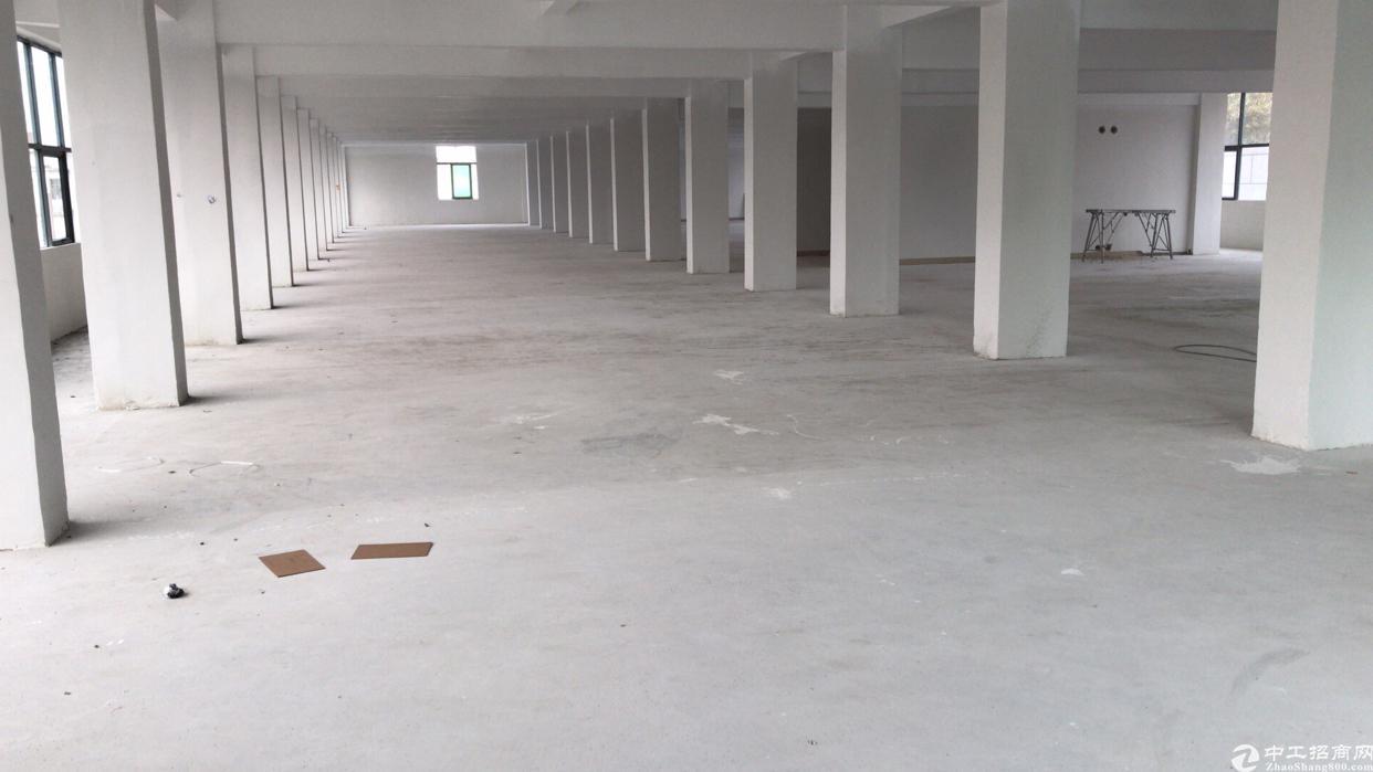 松岗东方大田洋沃尔玛附近适合做贸易的厂房楼上大小分租