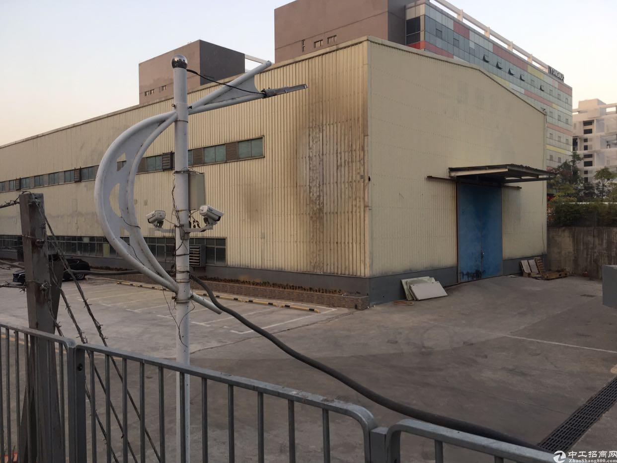 坪山坑梓一楼8米高钢构厂房出租1000平