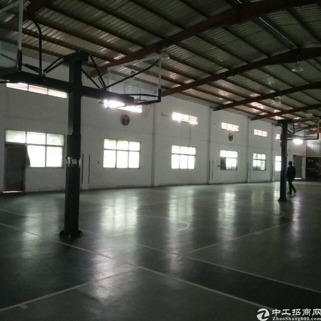 横岗安良新出来钢构厂房面积1200平厂房出租