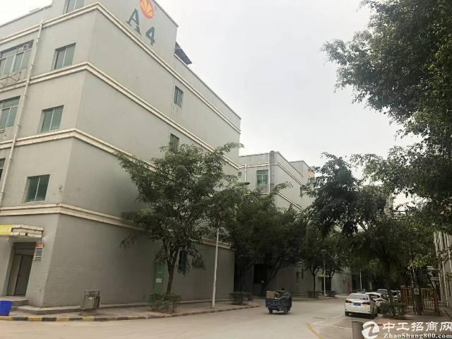龙华清湖大和路旁新出原房东带红本楼上1200平米带装修厂房出