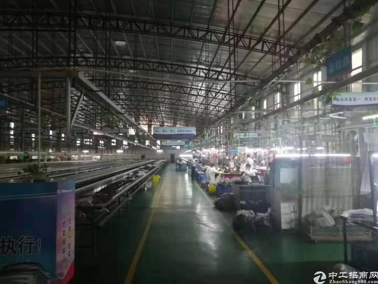 3600面积高埗镇独门独院钢结构准厂房