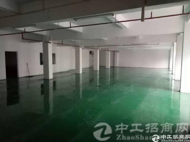 望牛墩镇,二楼1500平厂房出租,豪华装修