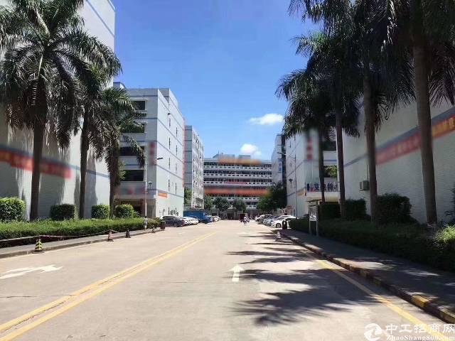 沙井西环电子城附近红本花园式厂房4楼1320精装修厂房出租