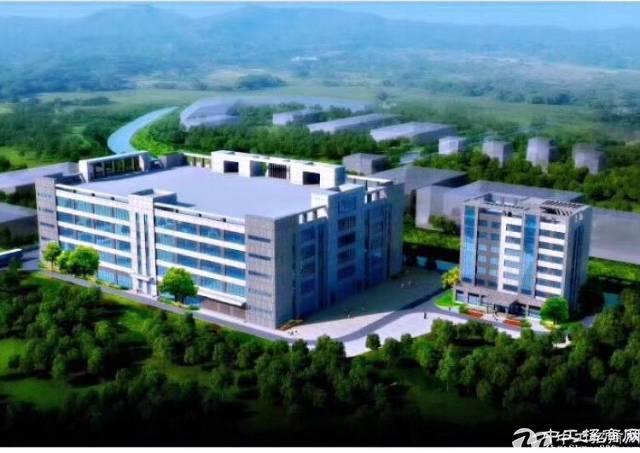 惠州全新标准厂房