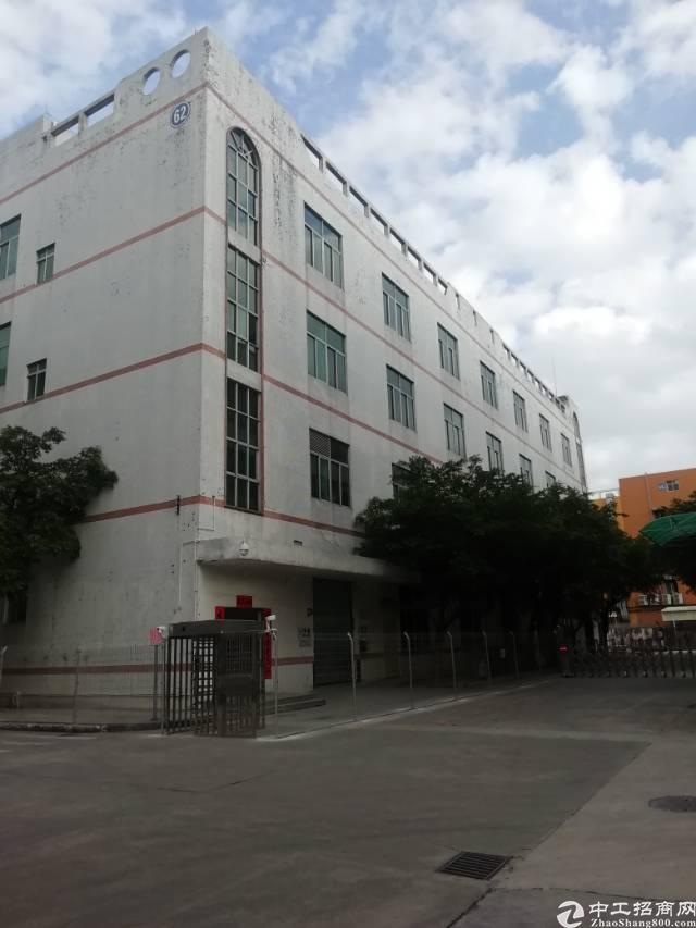 龙岗楼出租1700平厂房