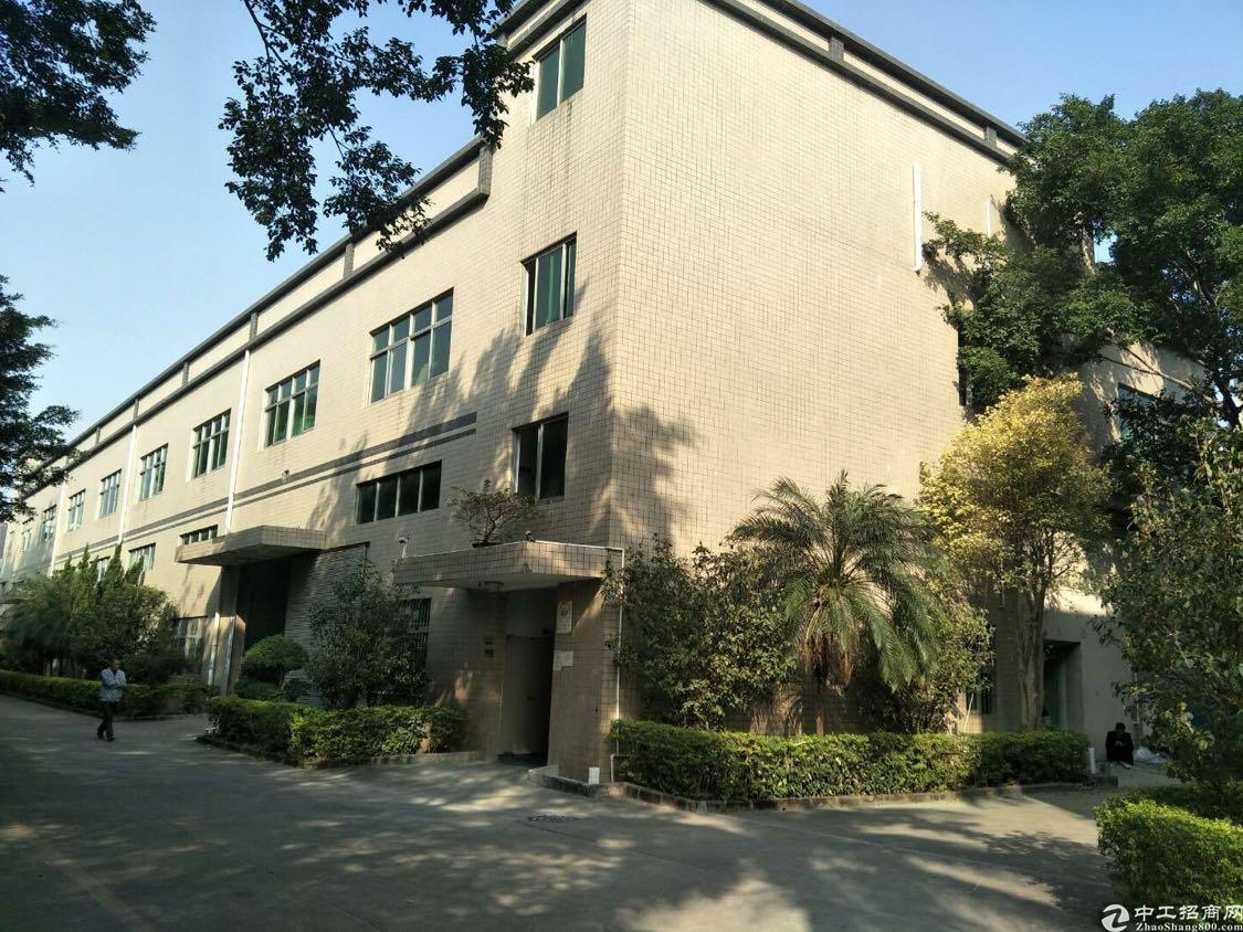 龙华大和路花园式独院9米单一层厂房
