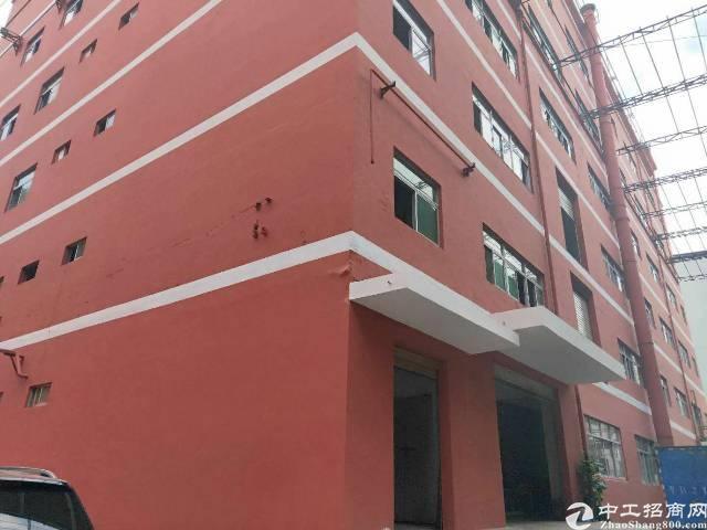 龙华大浪新塍工业区楼上标准厂房出租。
