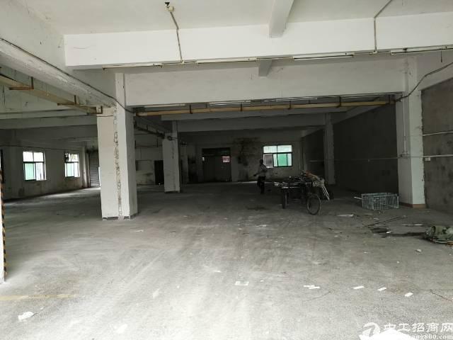 万江标准厂房分租一楼800平方