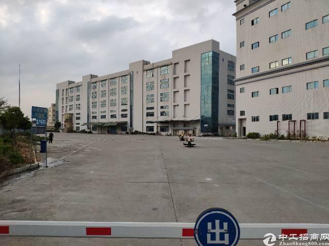 松岗107国道边原房东厂房150000平方带红本实际面积出租