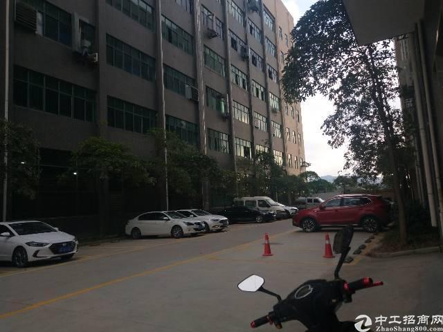 石岩水田第四工业区新出楼上1250平精装修厂房出租
