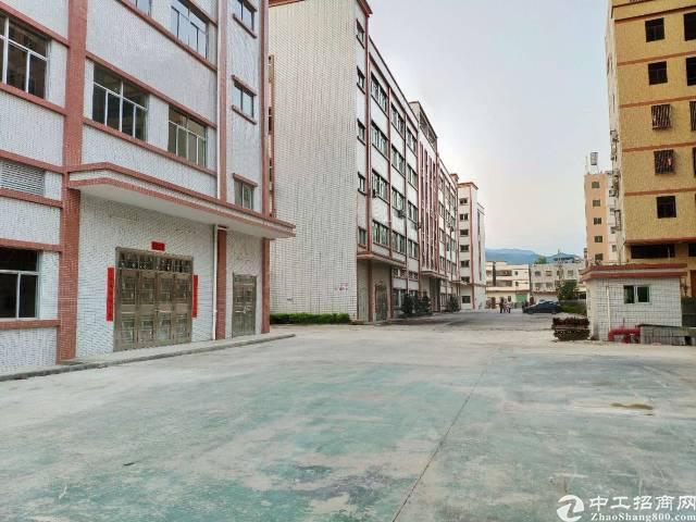 惠州市小金口四角楼一楼标准厂房滴水7米漂亮急