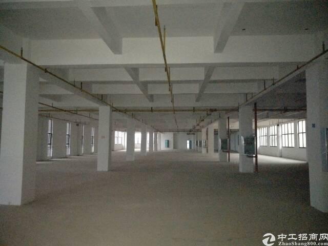 金银湖1700平办公场地出租,可做仓库,轻加工