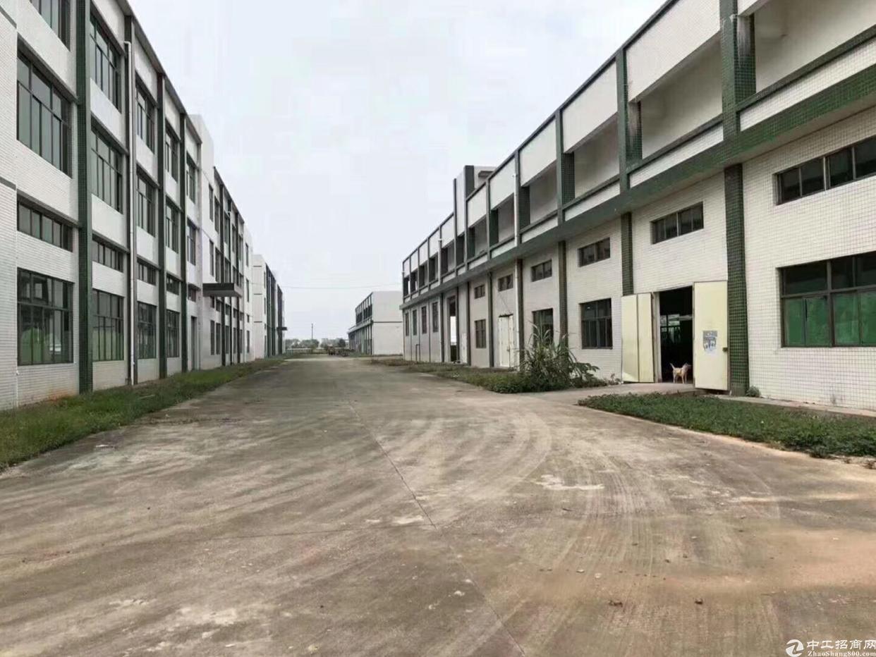 公庄新出独门独院标准单一层厂房出租