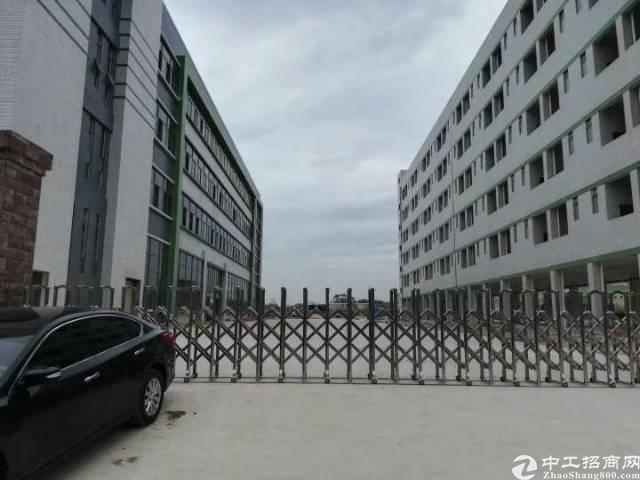全新标准厂房独门独院30000平方