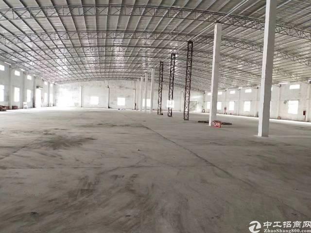 龙岗大型钢构厂房出租滴水8米空地超大独院钢构
