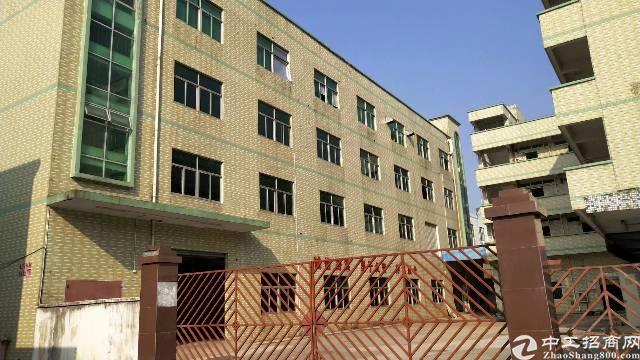 平湖山厦工业区标准厂房1190平出租