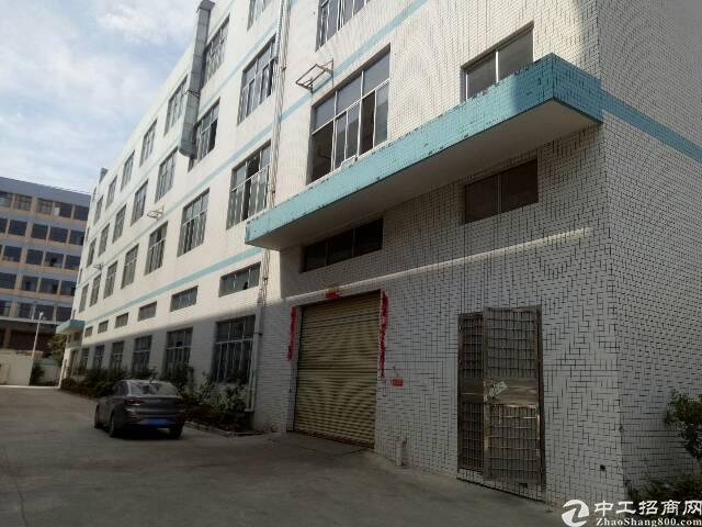 平湖新出一楼6米高厂房1300㎡出租