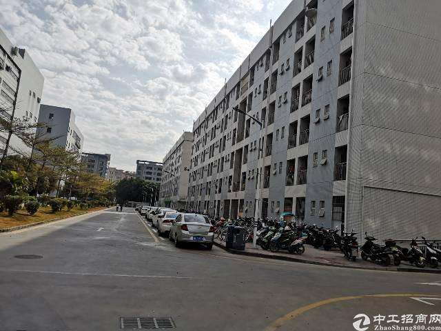 福永塘尾主干道旁大型花园式园区内楼上整层2800平方租30