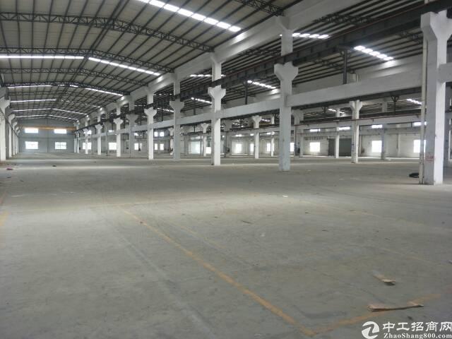 光明南光高速出口一公里处原房东12米滴水钢构出租