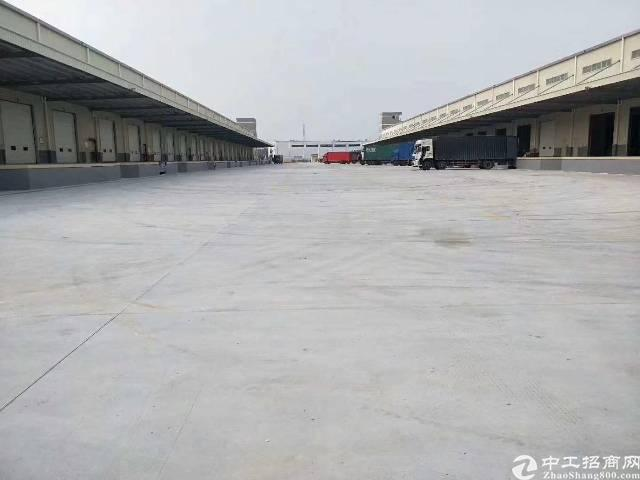 龙华新区20000平物流园出租,1000平起租,高度10米,