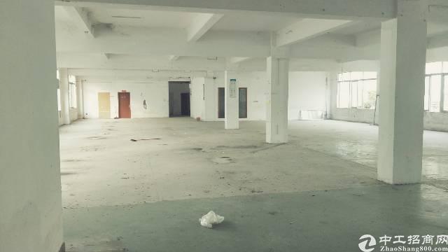 龙岗新生村碧新路旁工业园整栋厂房3380平出租!