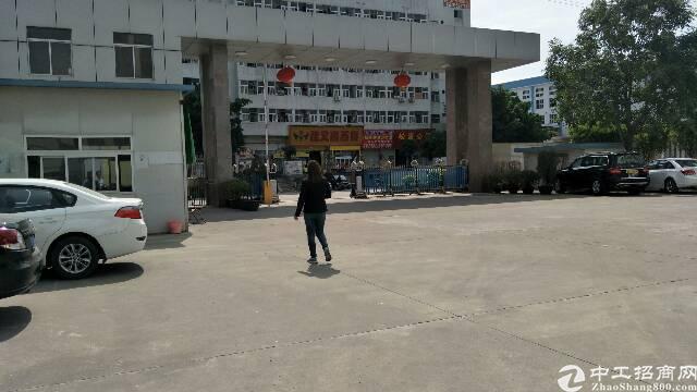 平湖清平高速出口一楼厂房出租1800平米,带航车