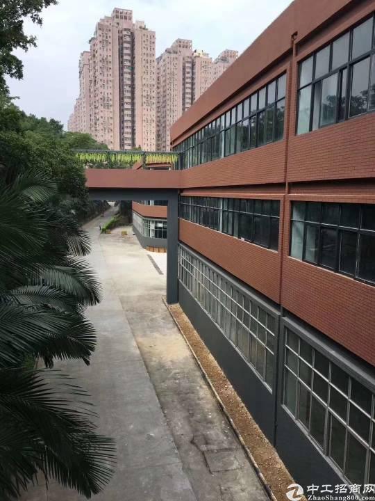杨美电商园2000平厂房出租(116起租)
