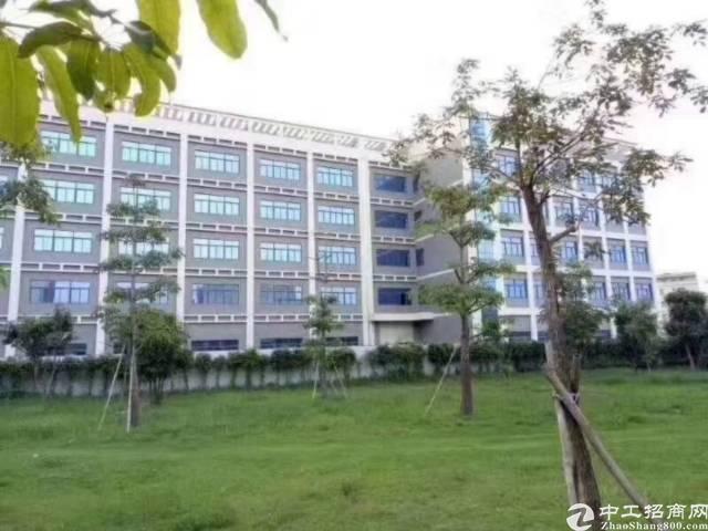 深圳坪地国际低碳城高桥独门独院43000平