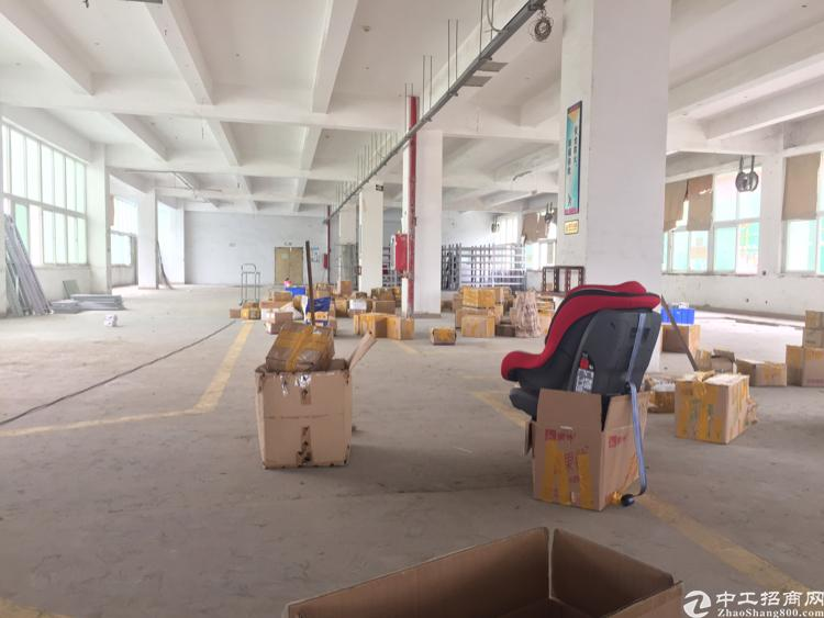 龙岗龙东独院厂房1100平