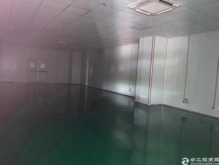 龙华清湖地铁口附近新出房东3500平全新厂房出租