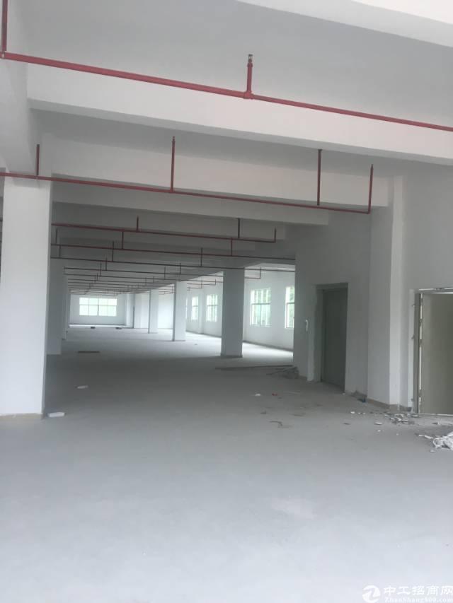 罗阳新出标准厂房