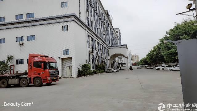 松岗双高速出口新出原房东红本厂房140000万平方米,-图2