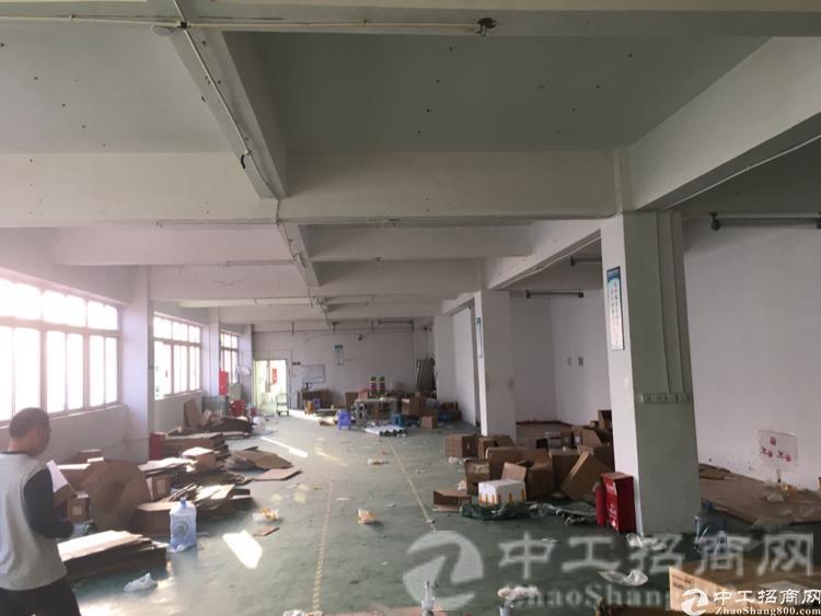 新塘经典独门独院楼上500平方厂房采光度好,可做小加工,仓库