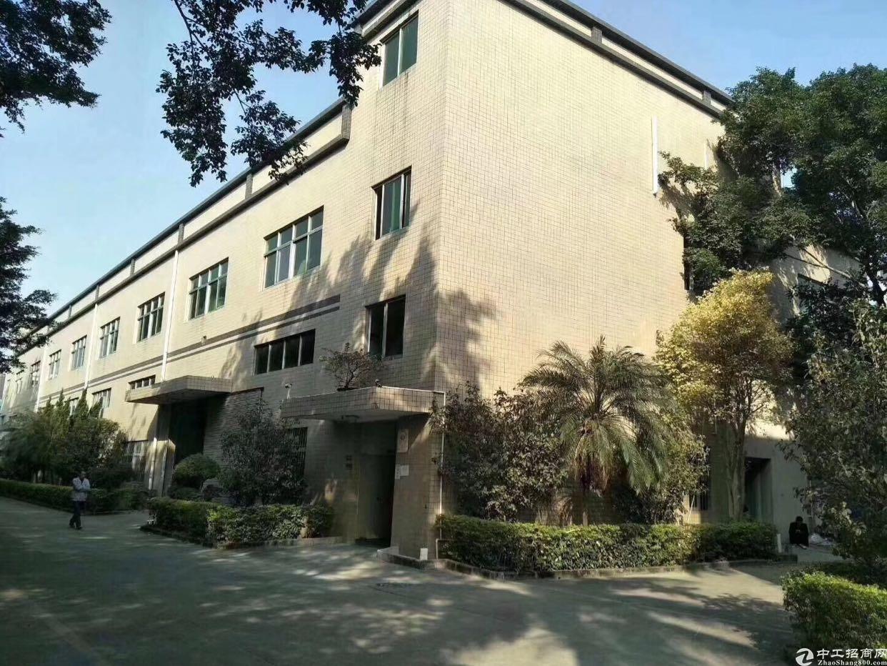 龙华原房东厂房4100平招租,一楼高度6米,合同5年