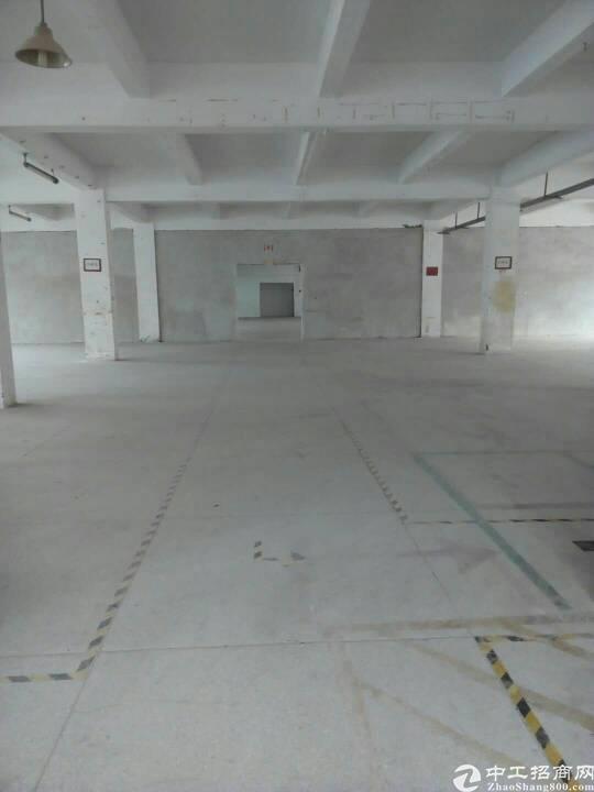 坪地工业园区楼上约4000平米厂房出租,可分