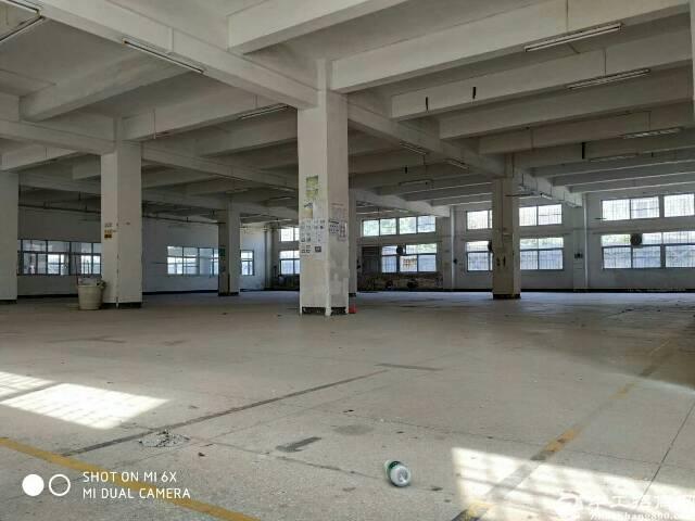 深圳坪地独院厂房4500平米出租