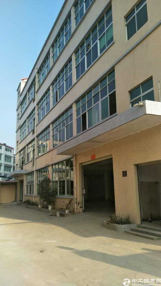 龙大高速口独门独院1-4层6000平方
