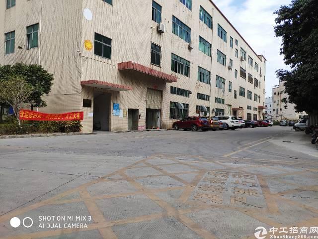 沙井107精装修3楼整层1500平方