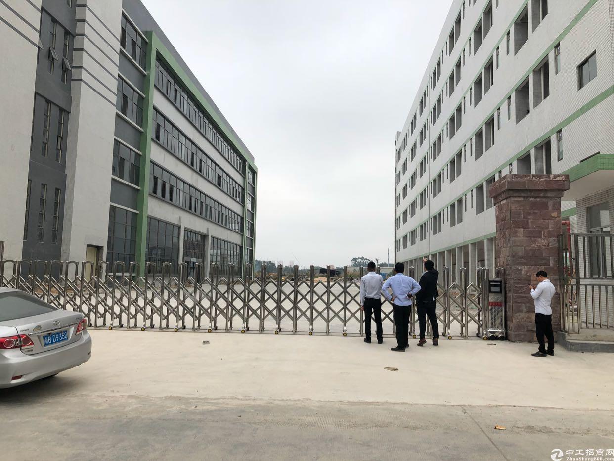 全新独院标准厂房出租20000平