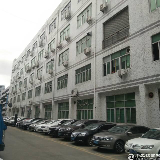 横岗228工业区楼上2500平仓库电商可以分租出租