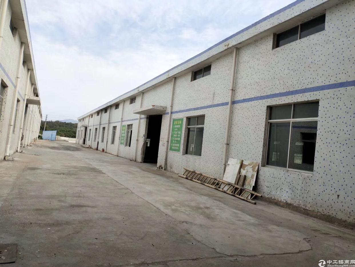 霞涌新出花园式钢结构厂房出租