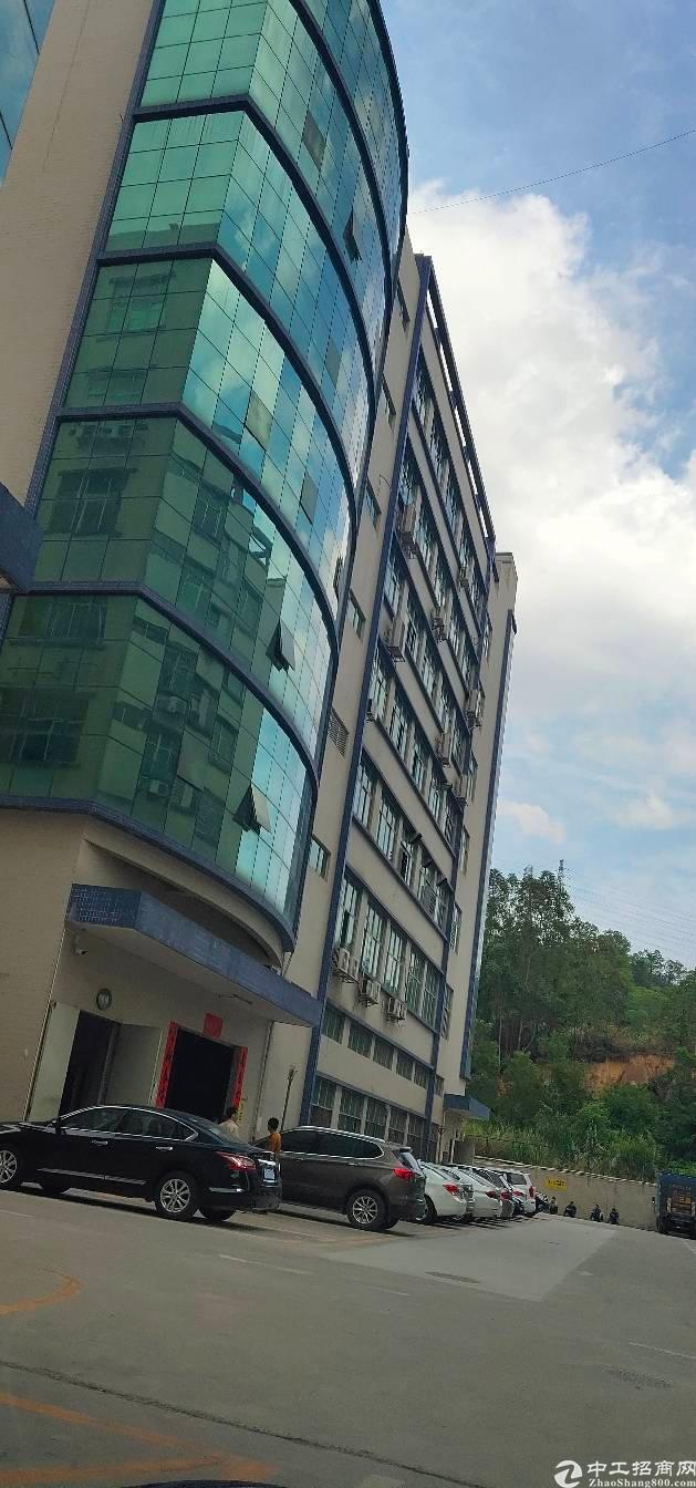 观澜清平高速口新出原房东面积标准厂房1600平方厂房出租。