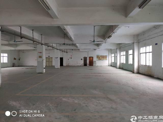 坪山坑梓独门独院红本厂房12000平方出租可分组可整租