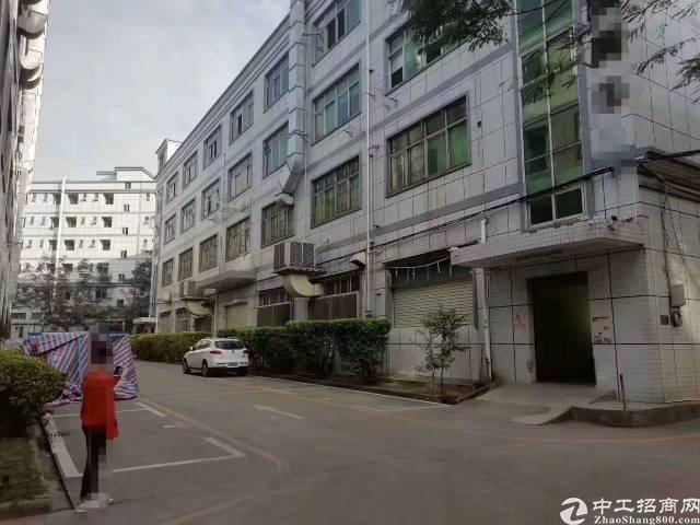 福永凤凰1-4层5200平米原房东厂房出租