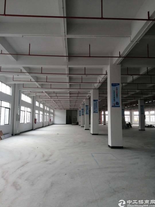 大朗靠近深圳工业区分租一层,有红本消防喷淋