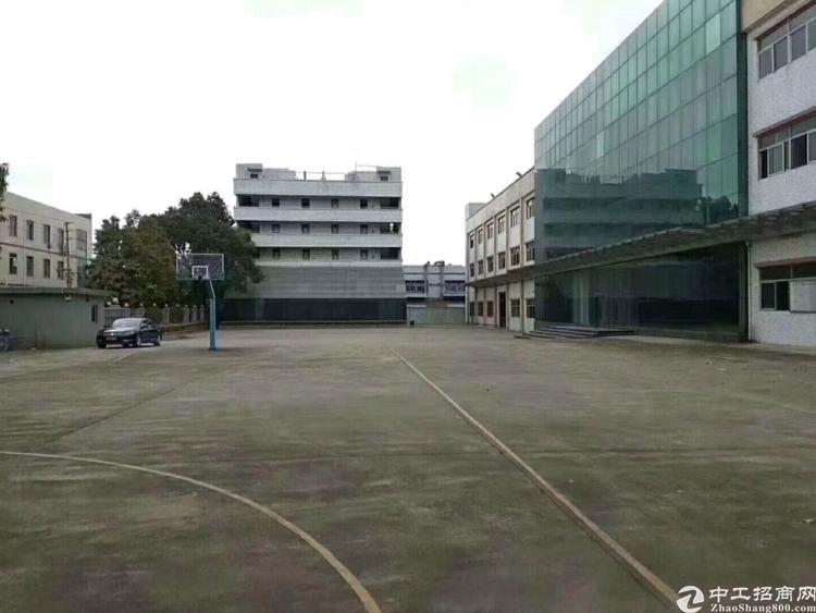 深圳龙华大浪原房东独院12200平厂房出租