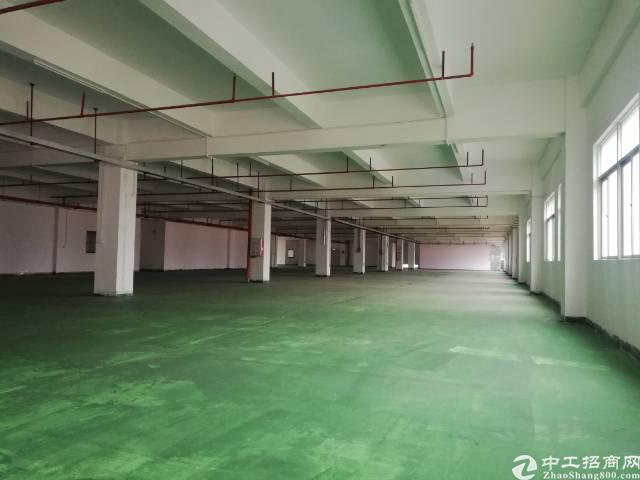 惠州惠阳秋长新出楼上有地坪漆标准厂房