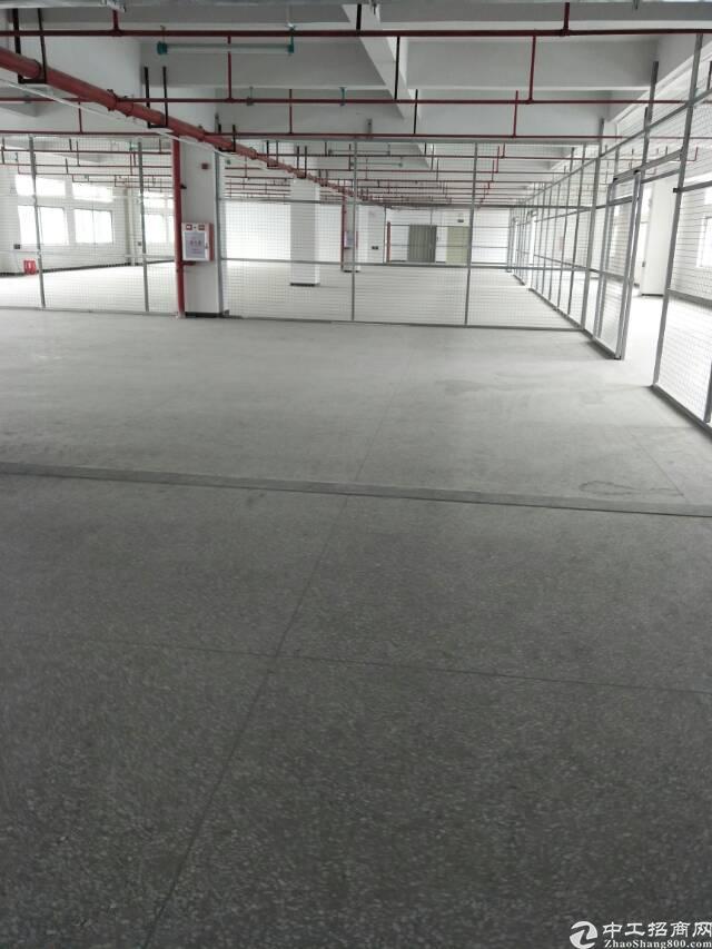 虎门3万平方标准厂房出租