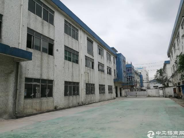 沙井107国道边一楼1800平方厂房招租